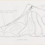 20-Nike-Basketball-Designs-that-Changed-the-Game-Nike-Air-Flightposite-9