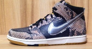 Nike Zoom Dunk High CMFT QS 'Snakeskin'