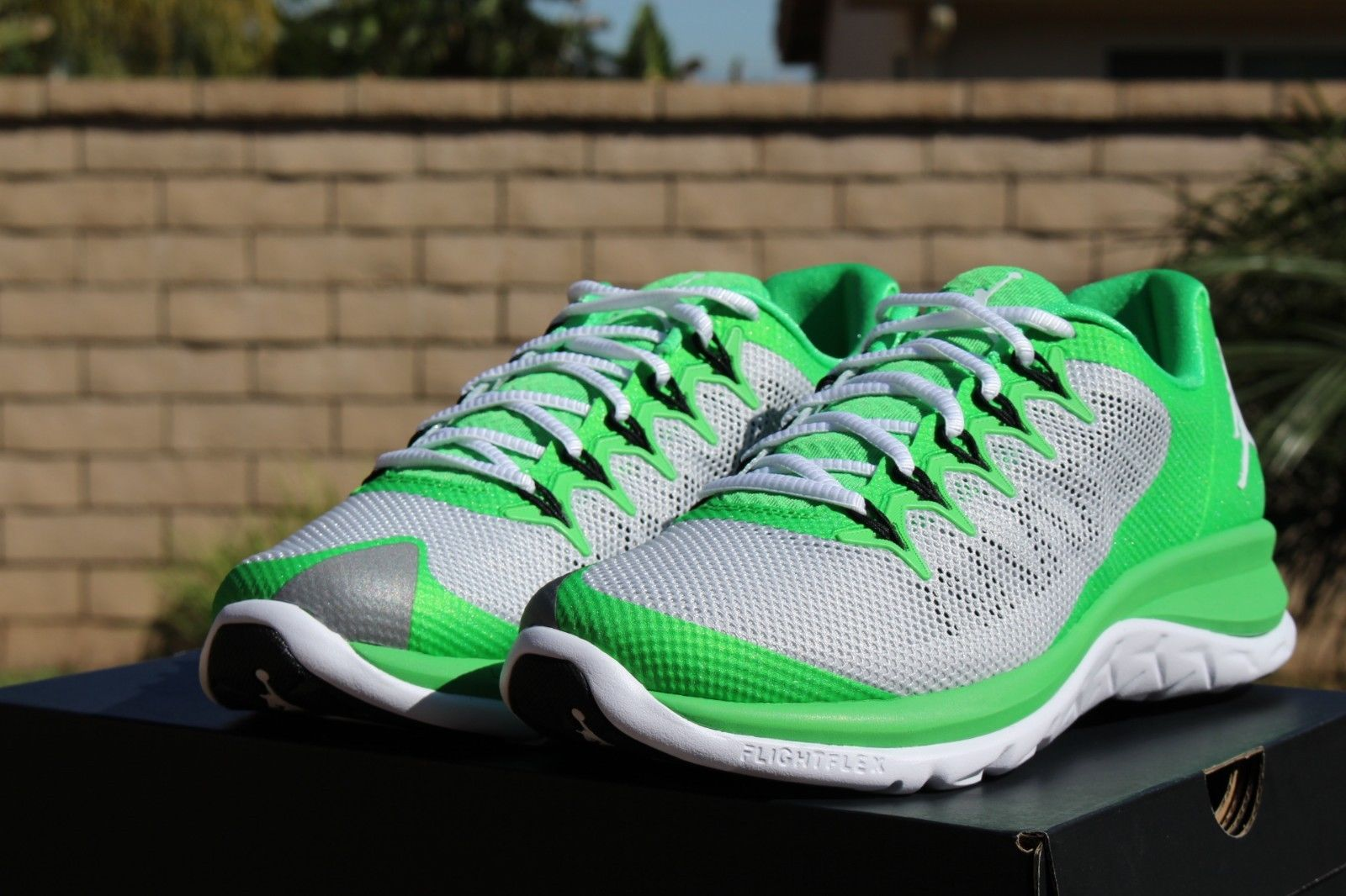 Jordan Flight Runner 2 Light Green: Pure Platinum 1 ...