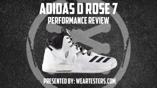 Rose 7 - Thumbnail