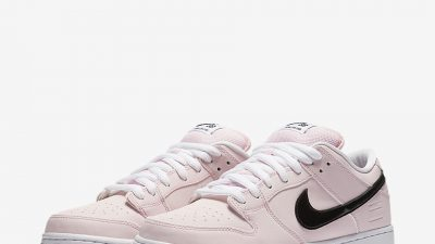 nike-dunk-low-sb-pink-box-7