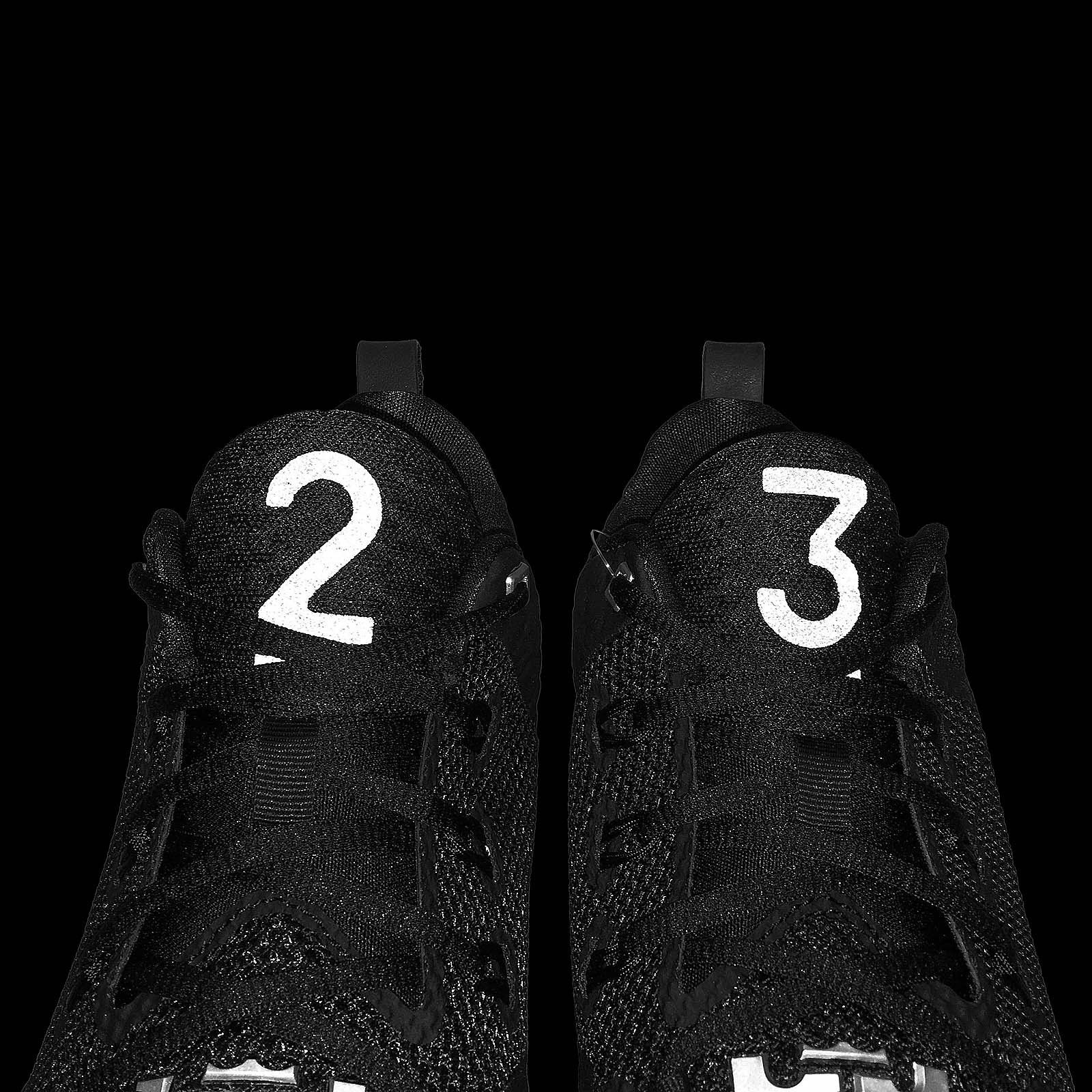 nike lebron ambassador 9 (IX) black 2