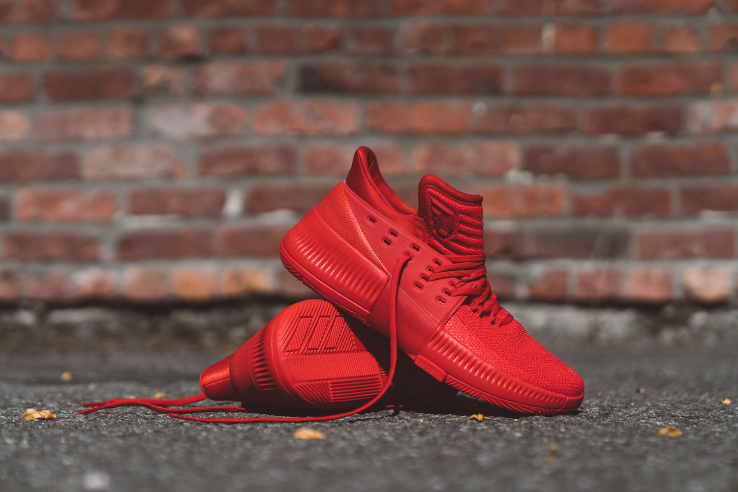 adidas dame 3 roots 6