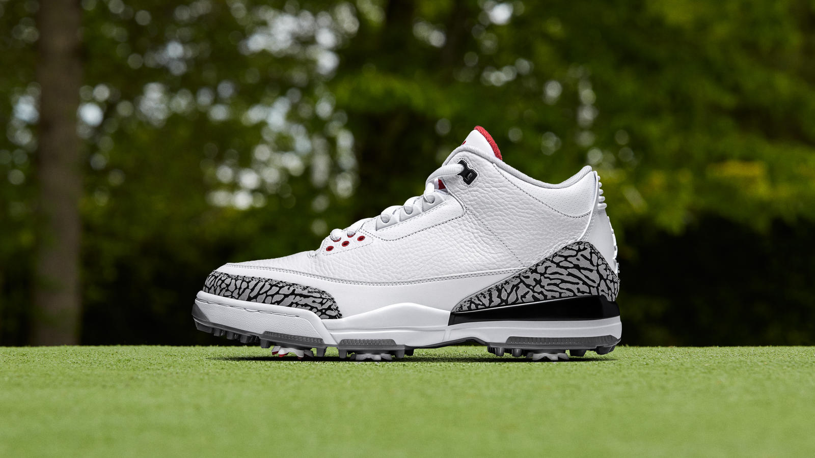 shoes jordan 3