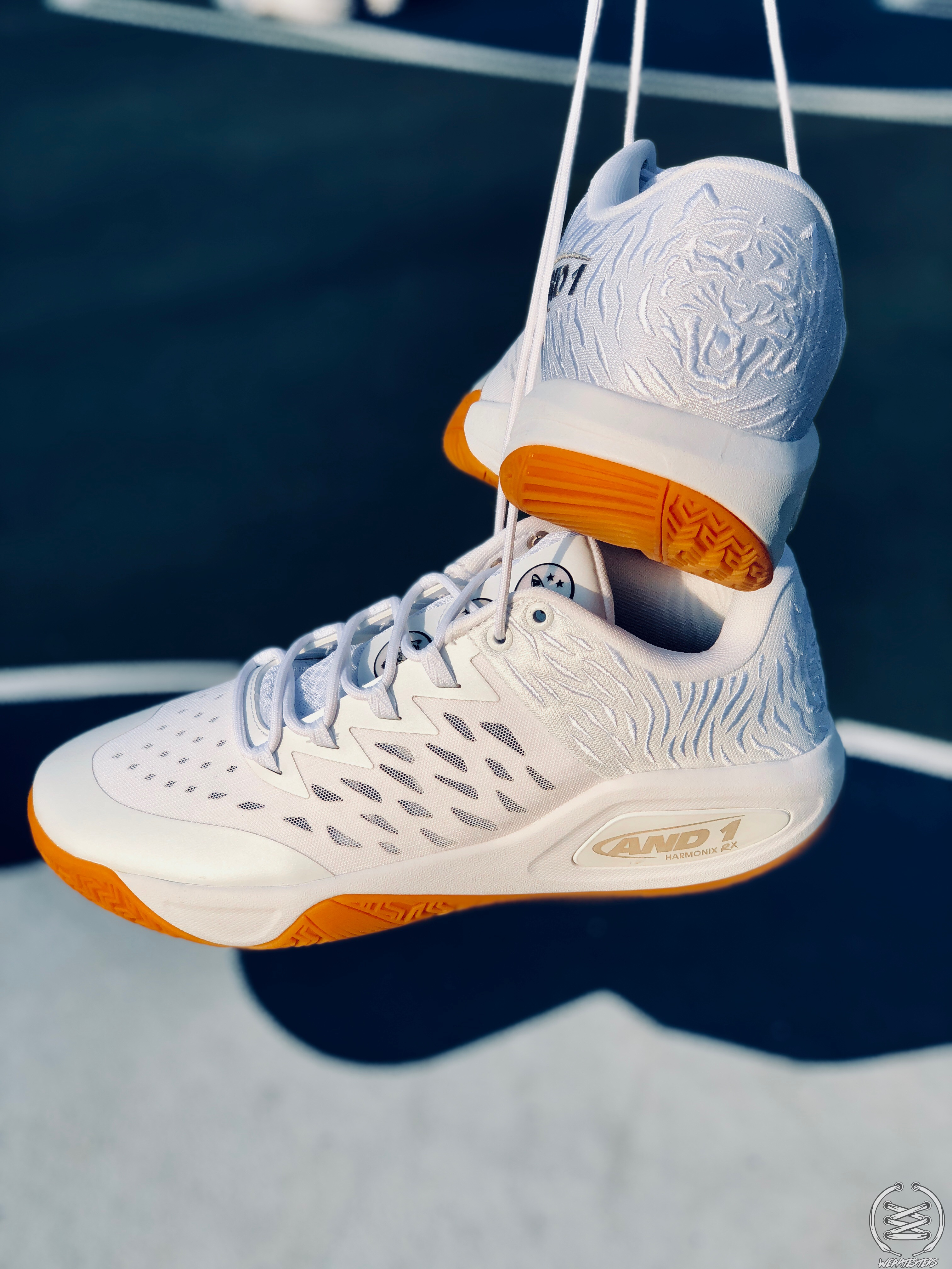 AND1 Attack Low 11