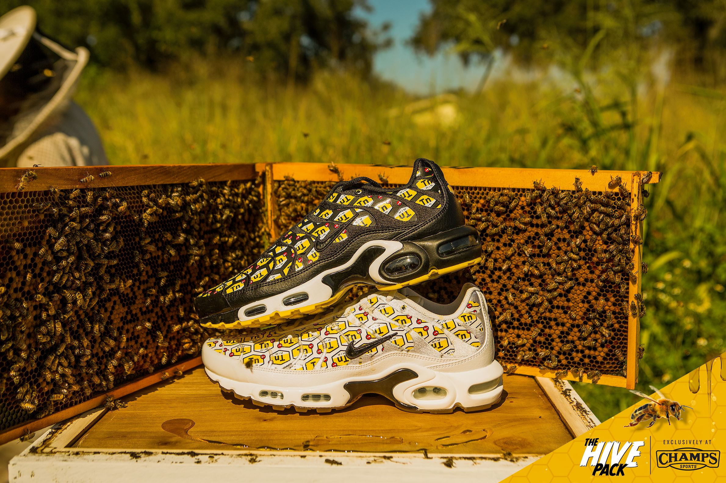 on sale c504f fbc17 The Nike Air Max Plus 'Hive Pack' is a Champs Sports ...